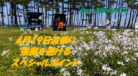 000浜ダイコン2s.jpg