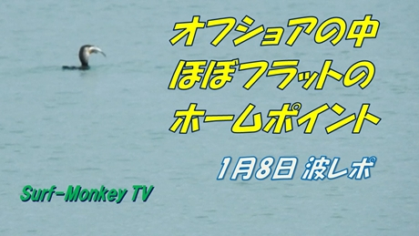 0108朝2.jpg