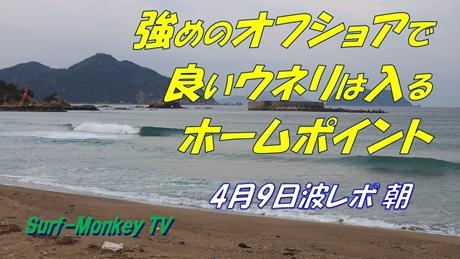 0409朝.jpg