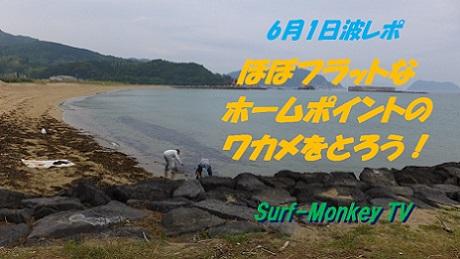 0601ワカメ.jpg