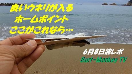 0608hone2.jpg