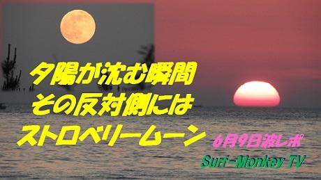 0609strberrymoon.jpg