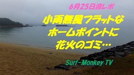 0625朝花火ゴミ.jpg