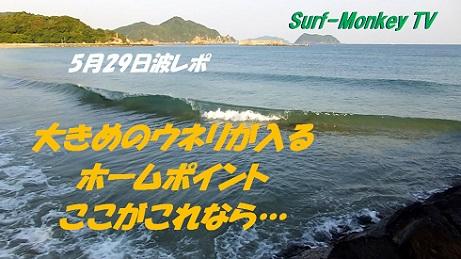 529朝.jpg
