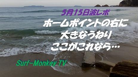 5月15日朝.jpg