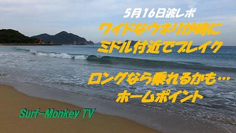 5月16日朝.jpg
