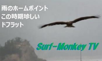 000表紙2★2.jpg