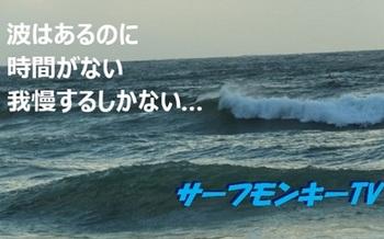 000表紙2forBlog.jpg
