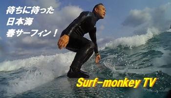 000YT表紙.jpg