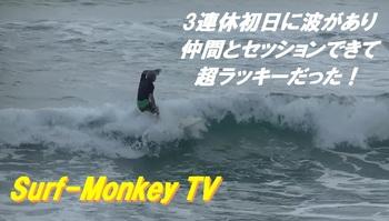 000monkey2.jpg