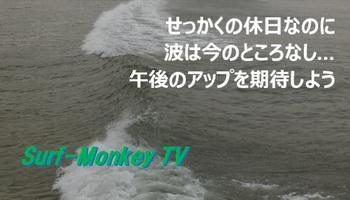 000youshi2.jpg