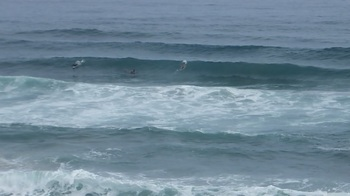001bigwavesurfin.jpg
