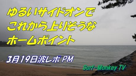 0319夕.jpg