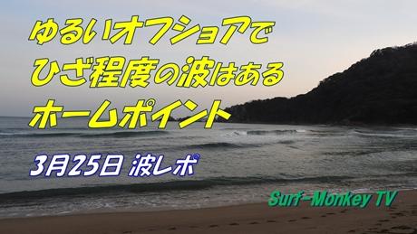 0325朝.jpg