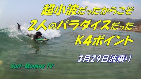 0329木与.jpg