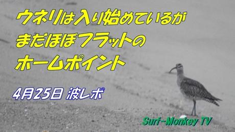 0425朝.jpg
