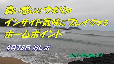 0428朝.jpg