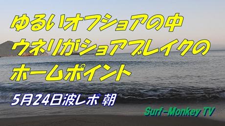 0524朝.jpg