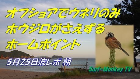 0525朝.jpg