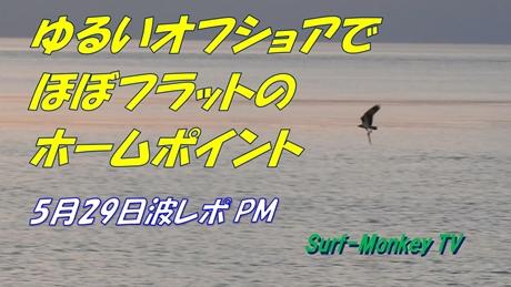 0529夕.jpg