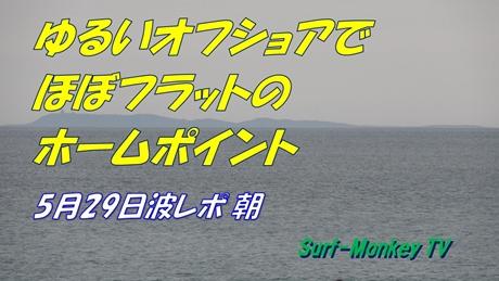 0529朝.jpg