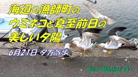 0621夕散歩.jpg