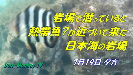 0719夕方.jpg
