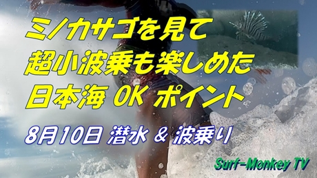 0810波乗り.jpg
