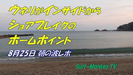0825朝.jpg